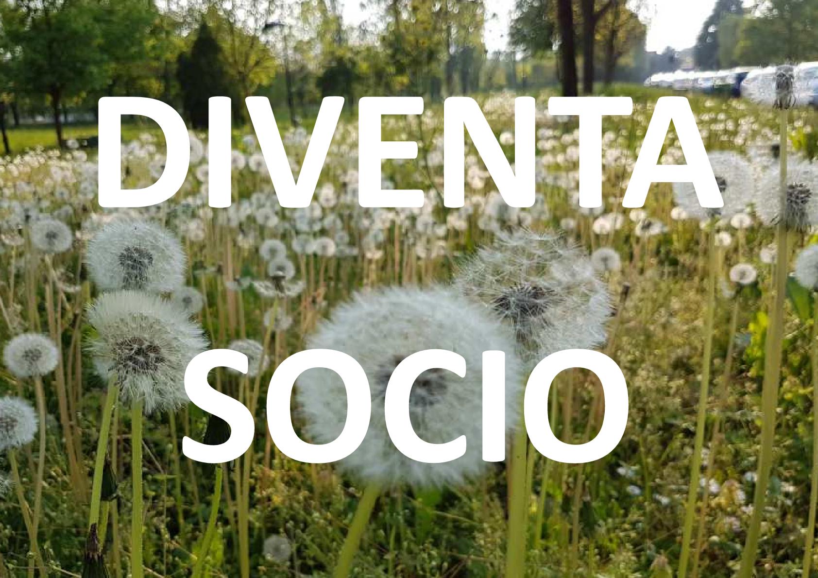 DIVENTA SOCIO.png
